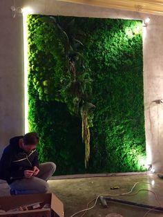 Zielona ściana pięknie oświetlona.