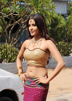 Priya Anand Latest Hot Navel Show Photos Pics Images Stills 2013