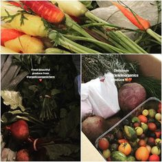 Produce day. All this delicious fresh local produce and now Miss Daisy gets to spend a day preparing it. How I love my job and my suppliers. X #daisydining #daylesford #catering #daylesfordcatering #bespokecatering #bespoke #traditionalcooking #localproduce #shoplocal #supportlocal #supportsmallbusiness #supportfarmers #farmers #knowwhereyourfoodcomesfrom #knowwhatyoueat #ethicalproduce #farmersproduce #lovefarmers #appreciation #ilovemyjob #freshfood #realfood #food #foodpics #foodstyle…