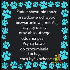 Dogs, Quotes, Animals, Quotations, Animales, Animaux, Pet Dogs, Doggies, Animal