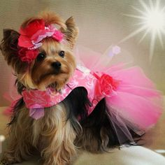 Pink Hair Bow Swarovski Flower Couture Headband by OrostaniCouture, $28.00