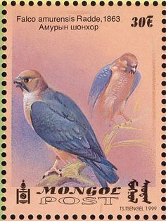 Amur Falcon stamps - mainly images - gallery format