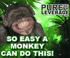 Review of the Pure Leverage Marketers Tools Suite
