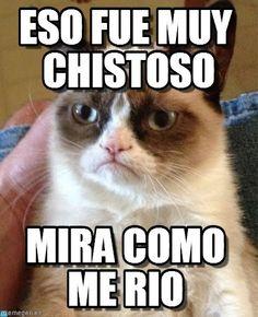 memes español - Buscar con Google