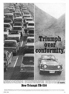 Triumph over conformity - New Triumph TR-250