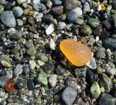 """June 10, 2013 - Continuing with Lin's treasure hunt, here's a juicy orange! Orange is about the rarest color, too! Although small, this gem is very nicely tumbled and rounded, with that """"glow"""" that only sea glass gives..."""
