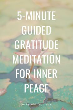 Beautiful 5-minute morning or evening guided gratitude meditation. Try it for 30 days, and notice how much better your feel. Listen to the full meditation and download a FREE PDF copy of the gratitude meditation script by clicking on the link >> #gratitude #selfcare #meditation #healing
