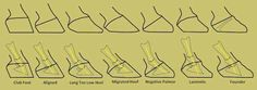 Hoof angles inside and out