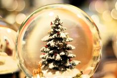 Spittelberg Schneekugel (c) Mautner stadtbekannt.at Advent, Online Magazine, Snow Globes, Christmas Bulbs, Holiday Decor, How To Make, Snow Globe, Christmas Light Bulbs