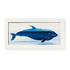 Whale Drawings | SouthernLiving.com
