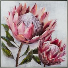 [New] The 10 All-Time Best Home Decor (Right Now) - Home Decor by Melody Boyce - So lovely to see the Protea flower trending through homewares this season Also known as sugarbushes they represent change and hope . Art Floral, Flower Graphic, Graphic Art, Protea Art, Protea Flower, Fleur Protea, Flower Aesthetic, Botanical Art, Painting Frames