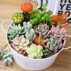 Fashion Office Garden Plastic Lotus Succulent Grass Desert Artificial Plants Fake Flower Home Decor Cactus Y Suculentas, Fake Flowers, Artificial Plants, Succulents, Garden, Home Decor, Ideas, Artificial Succulents, Succulent Arrangements