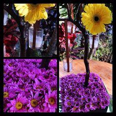 DECO Natural , aquí los árboles de centro de mesa son DECOLORES   Tu yo= 1 la fórmula para recibir a tus invitados By DECOLORES   #weddingdecoration #boda #decoracion #vintage #love #amor #creative #flores #flowers #crafts #decolores #caracas #novia #bride #fiesta #party #venezuela #instabride #purple #hechoamano #creativo #instalove #instagood #instamood #centrosdemesa #mustache #centerpiece #mesadedulces #expoboda #weddingplanner #Padgram