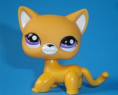 Littlest Pet Shop Cat | Littlest Pet Shop Cutest Pet Orange Short Hair Kitty Cat Purple Eyes ...