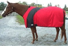 "Intrepid International - BLANKET EXSELLE PRIMA 83"" RED/BLACK FOB by Intrepid International. $99.31. 83"" Size, Red and black. Comes with a tail guard, leg straps, double closure at the chest and one surcingle. 600 denier nylon waterproof outer shell. Seams are welded and reinforced. Inside you will find 180 grams of Hollow fill, and a 190 denier nylon. BLANKET EXSELLE PRIMA 83"" RED/BLACK FOB"