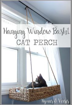 diy hanging basket cat perch, how to, pets animals, repurposing upcycling - What cat doesn't like to look out the window or take a nap in the sun? I made this basket perch for my cat, Sadie, to get a good view of the springtime birds from our bedroom window. For the complete tutorial - stop by my blog: http://hymnsandverses.com/2015/03/diy-hanging-window-basket-cat-perc.html