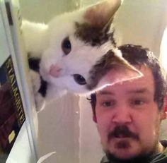 Your cat has active camouflage // funny pictures - funny photos - funny images - funny pics - funny quotes - Funny Cat Pictures, Funny Images, Funny Photos, Bizarre Photos, Animal Pictures, Funny Animals, Cute Animals, Funniest Animals, Perfectly Timed Photos