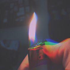 Anemonas de luz