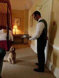 Room service, Miss Darcy?