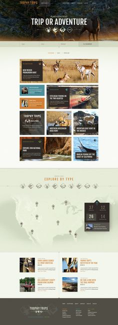 Unique Web Design, Trophy Trips #WebDesign #Design (http://www.pinterest.com/aldenchong/)