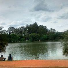 #parque #parqueibirapuera #ibirapuera #sãopaulo #sp #paisagem #lago #árvores - 16/10/2016