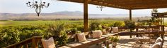 Paraiso Vineyards has epic views of the Salinas Valley from the back deck of their tasting room. It's a great spot to spend the day.