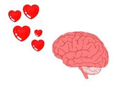 http://www.ted.com/talks/helen_fisher_tells_us_why_we_love_cheat.html
