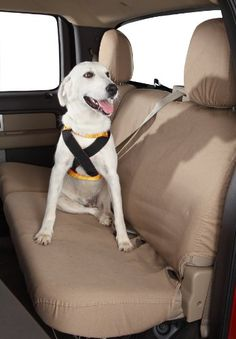 Dogs: Ruff Riders Roadie Canine Vehicle Safety and Training Harness – Size Large « DogSiteWorld-Store