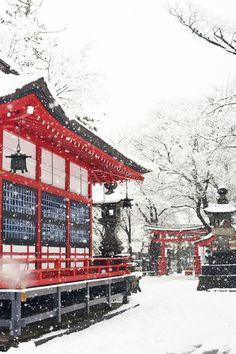 Hiver au sanctuaire Fukashi …beautiful, simple colour contrasts