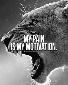 My pain is my motivation! Lion Quotes, Wolf Quotes, Wisdom Quotes, True Quotes, Best Quotes, Qoutes, Motivational Quotes Wallpaper, Inspirational Quotes, Motivational Posters