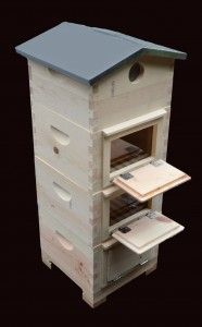 Warre hive duplicates a tree habitat the best of anything made. This site is all about bees and keeping bees. Our forest needs a forest of these hives.
