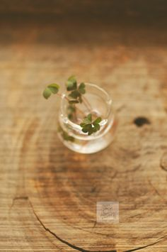 Day 127.365 – Still Life with Small Jar by Anshu A on 500px