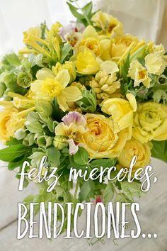 Feliz Miércoles / Feliz Día / Wednesday / Miércoles / Happy Wednesday / Happy Day / Que pases un lindo día / Buenos Días / Good Morning