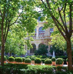 """Palais et Place de la bourse Lyon. L'un des endroits les plus charmants de la ville. Sur cette place se trouvent aussi l'Institut Culturel italien et l'historique bar """"Le Cintra""""."""