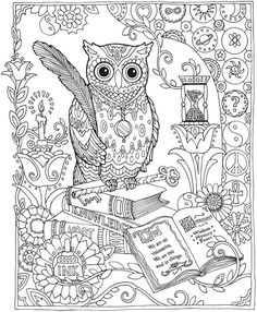 Owl coloring