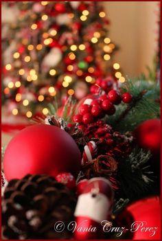 Candy cane Decor Candy Cane Christmas Tree, Christmas Bulbs, Candy Cane Decorations, Candy Canes, Holiday Decor, Christmas Light Bulbs