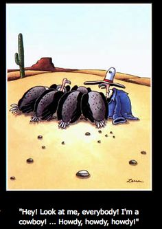the far side cowboy cartoons | Link To This Post