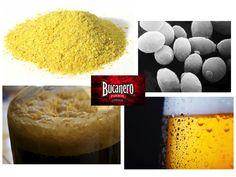 CERVEZA BUCANERO TE DICE ¿Qué es la levadura? Son unos microorganismos que se añaden al mosto en el proceso de fermentación y transforman los azúcares en alcohol y anhídrido carbónico. Por la gran importancia que tienen en el proceso de elaboración, cada productor tiene sus propias levaduras cultivadas, que le dan a la cerveza unas características especiales y distintas a las de otros productores. www.cervezasdecuba.com