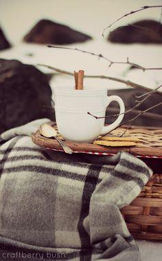 warm and cozy picnic Expresso, Company Picnic, Summer Picnic, Fall Picnic, Winter Time, Cozy Winter, Winter Coffee, Cozy Coffee, Winter Cabin