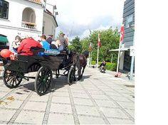 2 hestekræfters højtlæsning for børn d. 13. september. Stå på foran biblioteket mellem 11.00-13.30.