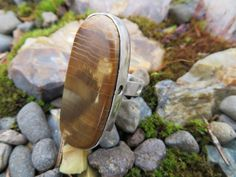 Industrial/Steam punk looking ring.  Oregon petrified wood, size 8, #319 by Sandy River Jewelry
