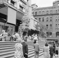 Mark Foy's Department store in Liverpool St,Sydney at Christmas time in 1959.A♥W