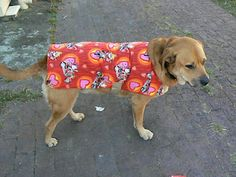 Dog Coat Tutorial