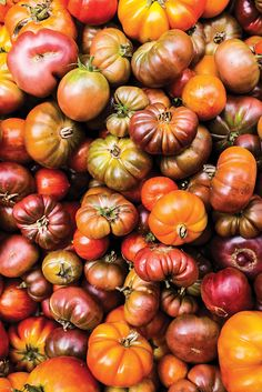Kim V. | Soply  Heirloom Tomatoes  #foodie #foodphotography #photography