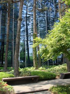 A corporate garden in the city Seoul.