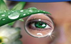 THROW AWAY YOUR GLASSES ALREADY! THE WORLD CELEBRATES! THIS INGREDIENT WILL CURE YOUR EYE PROBLEMS NATURALLY AND IMPROVE YOUR EYESIGHT!