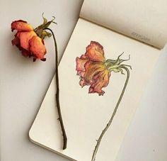 Moleskine — Artwork by Art Sketches, Art Drawings, Pencil Drawings, Pencil Art, Arte Sketchbook, Moleskine Sketchbook, Fashion Sketchbook, Design Floral, Red Design