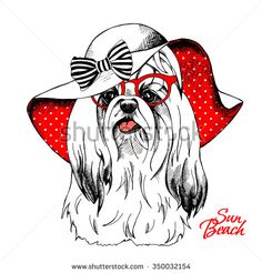 The image of the dog York in the  in the Summer sun hat with bow and with glasses. Vector illustration.