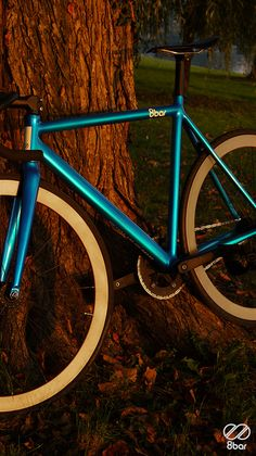 Fixed Gear...Blue