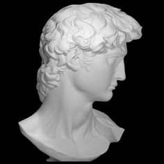 Printable Head of Michelangelo's David by SMK - Statens Museum for Kunst Roman Sculpture, Sculpture Art, Sculptures, Miguel Angel, Head Statue, David, Renaissance Art, Michelangelo, Figure Drawing